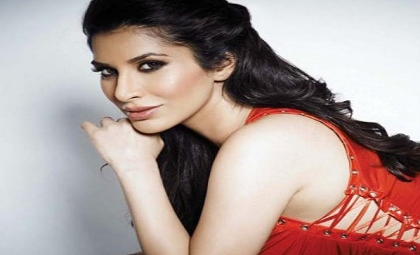 Sophie Choudry Biography